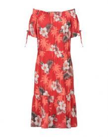 Платье до колена JADICTED 34937778sd
