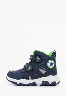 Ботинки Shuzzi MP002XB00Q06R260